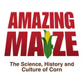 Amazing Maize: The Science, History and Culture of Corn exhibit has opened at the Indiana State Museum in Indianapolis. The exhibit runs through January 20, 2013.