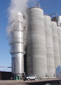 Escaping steam partially hides the top of the Brock Commercial Tower Dryer during the grain drying process.